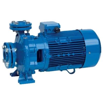 Промышленный центробежный моноблочный насос Speroni CS 50-160B